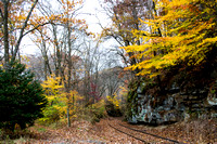 BY THE AUTUMN RAILROAD TRACKS