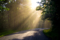 Sunbeams on Country Road